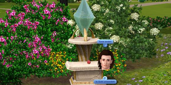 Optionen am Stein der Weisen in Die Sims 3