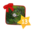 Fairy Garden   Feengarten