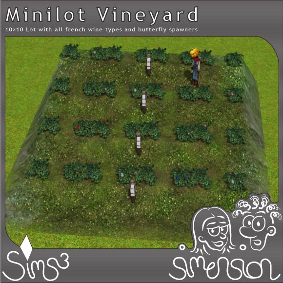 Vineyard | Weinberg