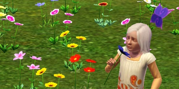 Sim riecht an Wildblume