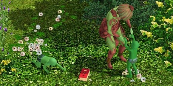 Pflanzensim-Nachwuchs groß ziehen