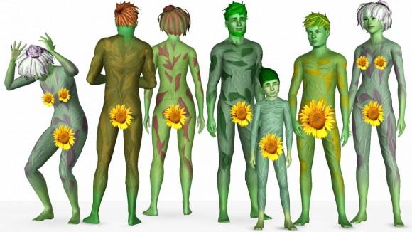 Pflanzensims mit unterschiedlichen Blattfarben