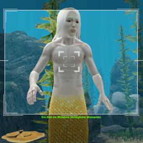 Sims 3 Fähigkeit Fotografie – Aufahmen mit der Unterwasserkamera