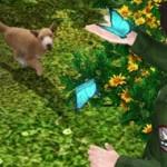 Sims 3 Fähigkeit Sammlen