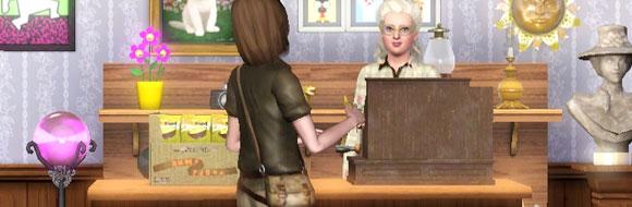 Sims 3 Fähigkeit Kommissionieren