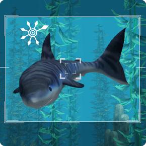 Die Sims 3 Unterwasserkamera