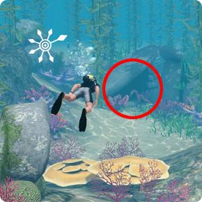 Tauchbezirk Felsenriff – Unterwasser-Höhle