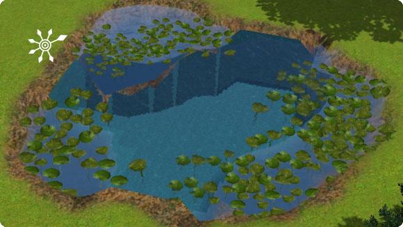 Übergang von Teich zu Pool verstecken