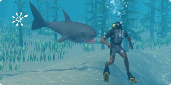 Haiangriff von hinten