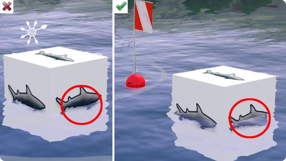 falsche und richtige Höhe der Zuchtstationen im Wasser