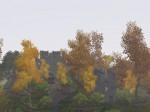 Düsterstrom-Ruine