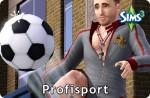 Sims 3 Karriere Profisport