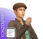 Sims 4 Emotion Konzentriert