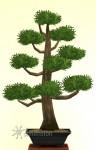 Sims 4 Gartenarbeit Symmetrische Bonsai-Form