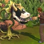 Kuchen der Kuhpflanze essen in Die Sims 4