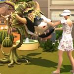 Kuhpflanze streicheln in Die Sims 4