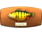 Sims 4 Fisch an der Wand Amerikanischer Flussbarsch