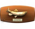 Sims 4 Fisch an der Wand Forelle