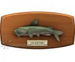 Sims 4 Fisch an der Wand Katzenfisch