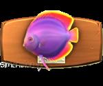 Sims 4 Fisch an der Wand Diskusfisch