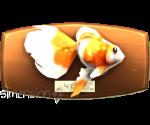 Sims 4 Fisch an der Wand Exotischer Goldfisch