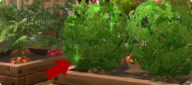 Glitzern an Pflanzen deutet die Möglichkeit der Weiterentwicklung der Pflanzenqualität an