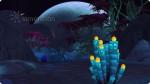 Sammelstellen für Glühorbs auf dem Versteckten Ort Alienwelt Sixam