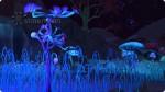 Sammelstellen für Fangblumen auf dem Versteckten Ort Alienwelt Sixam