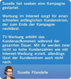 Fernsehwerbung oder Internet-Kampagne für das eigene Geschäft schalten