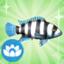 Die Sims 4 Sammlung Fische – Buntbarsch