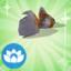 Die Sims 4 Sammlung Fische – Exotischer Goldfisch
