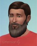 Die Sims 4 Zeit für Freunde mit neuer Bart für Männer