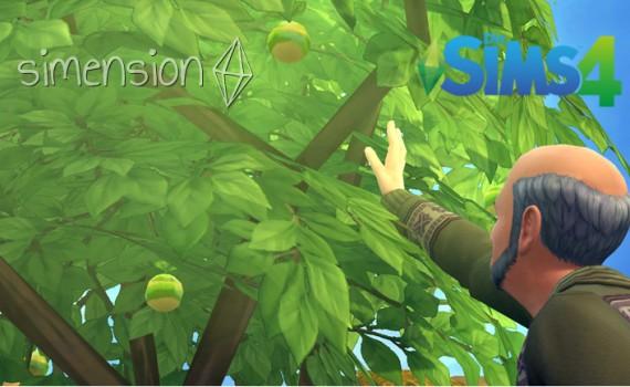 Die Sims 4 Simfrucht-Herausforderung