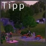 Sims-3-Tipp-Picknick-Picknickdecke-Picknickkorb