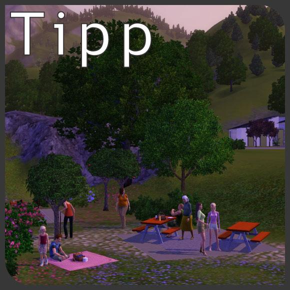 Picknick in Die Sims 3